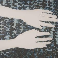 vocabulary: hands, detail