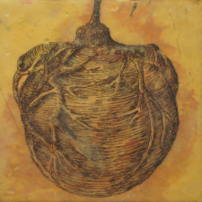 Specimens, 20 8 x 8 inch panels, encaustic with etching