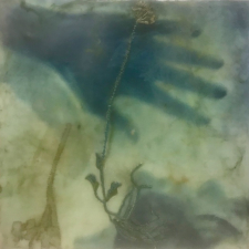 Submerged, 8 x 8 inches, archival print and encaustic on panel