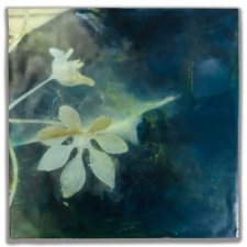 Hand Leaf, 8 x 8 inches, archival pigment print and encaustic on panel