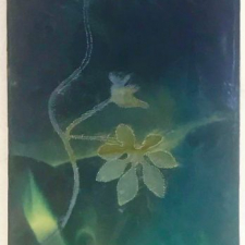 Gift, 8 x 10 inches, archival pigment print and encaustic on panel